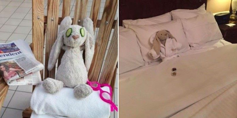 cute-news-bunny-reunited-little-girl-hotel-win