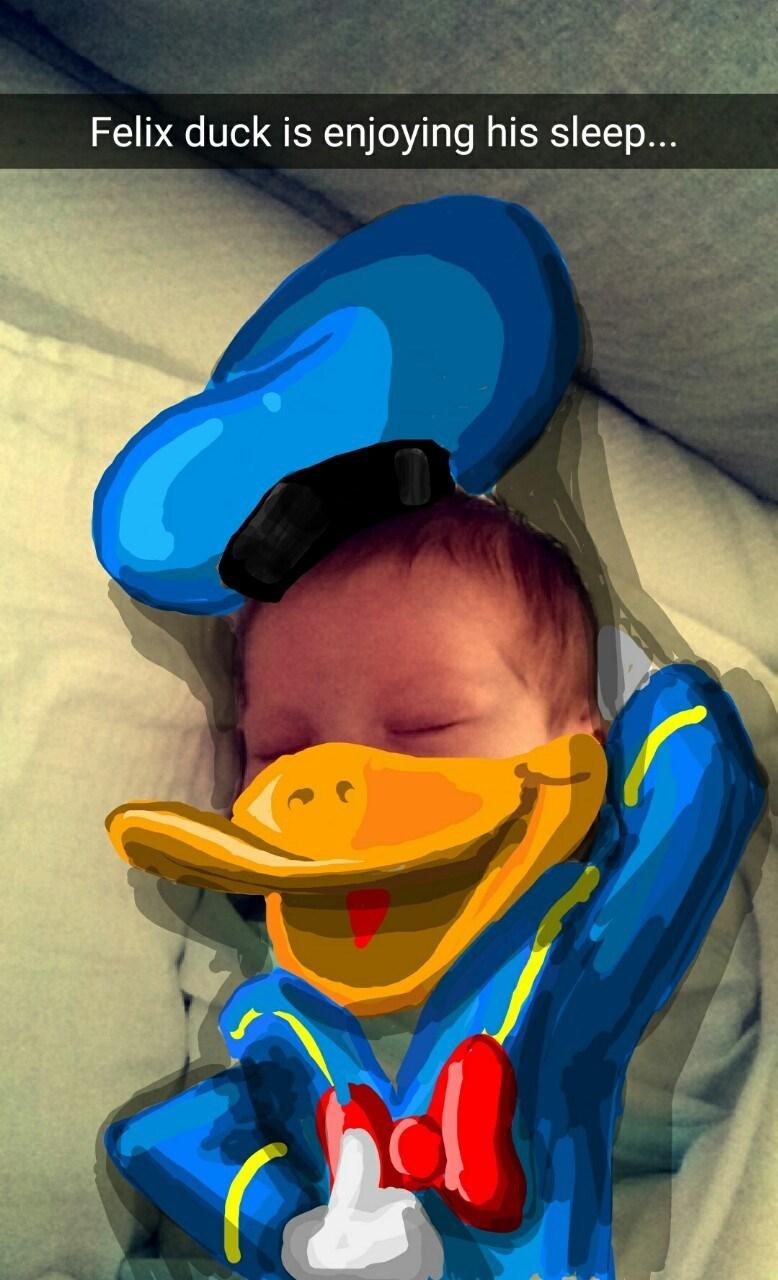 Cartoon - Felix duck is enjoying his sleep...