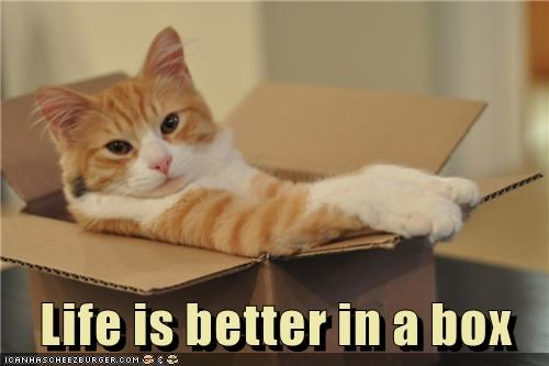 Life is better in a box