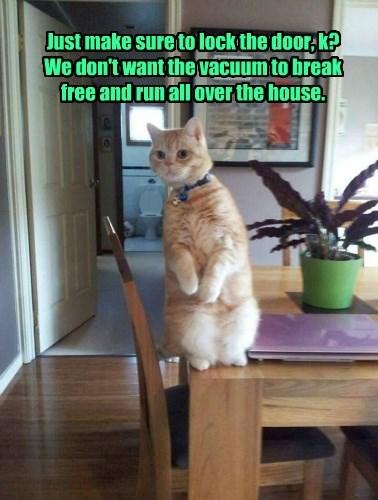 cat vacuum - 8601922560