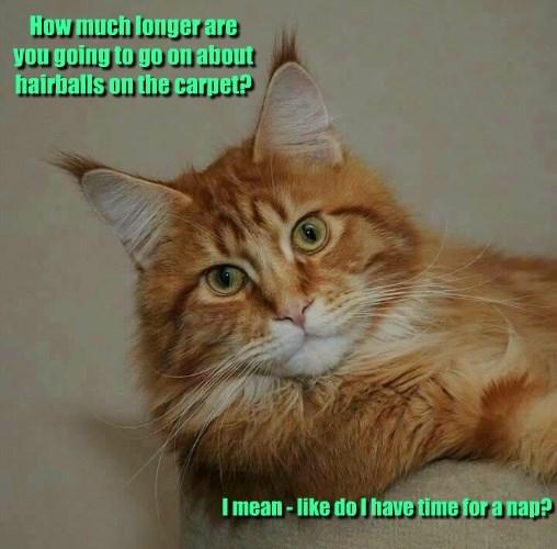 cat hairball - 8601933312