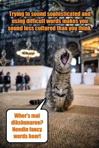 cat dictionary culture