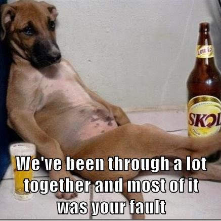 animals beer dogs - 8602085632