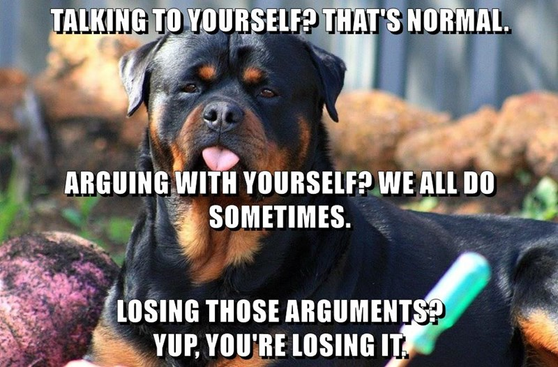 I Has A Hotdog Talking To Yourself Funny Dog Pictures Dog