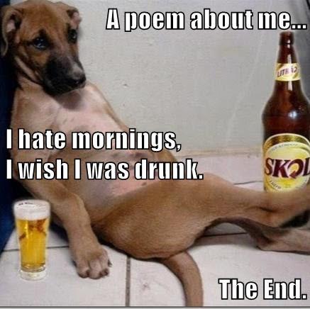 animals beer drunk - 8602135296