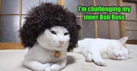 Cheezburger Image 8602288640