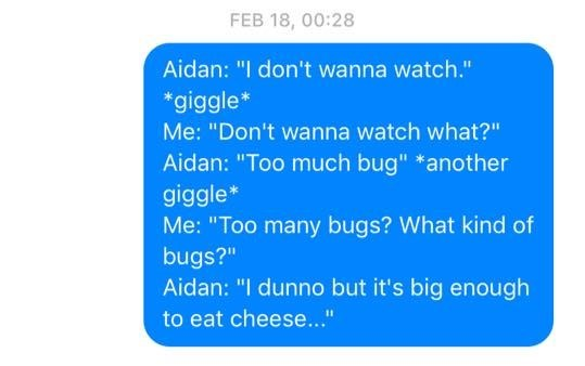 "Text - FEB 18, 00:28 Aidan: ""I don't wanna watch."" *giggle Me: ""Don't wanna watch what?"" Aidan: ""Too much bug"" *another giggle* Me: ""Too many bugs? What kind of bugs?"" Aidan: ""I dunno but it's big enough to eat cheese.."""