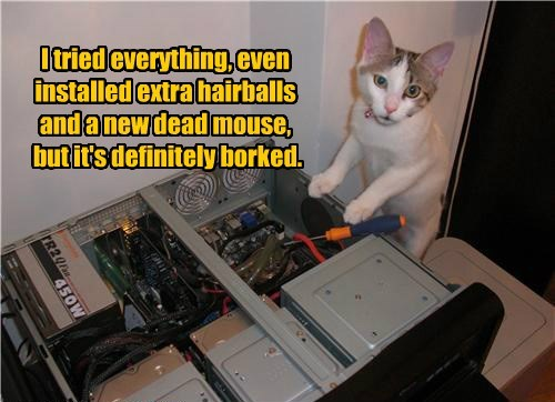 I tried everything, even  installed extra hairballs and a new dead mouse,  but it's definitely borked.