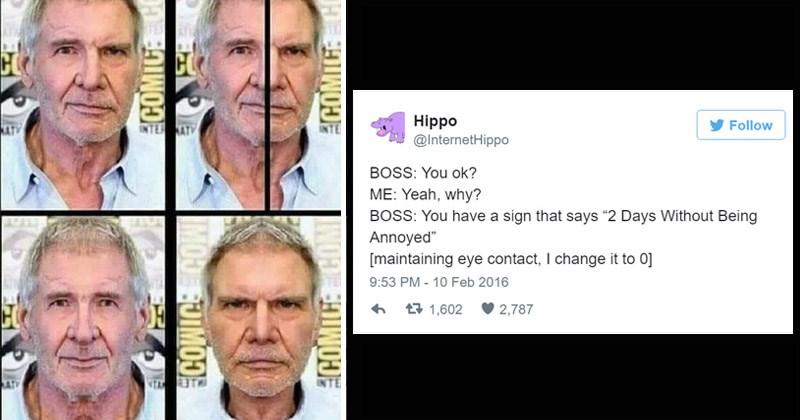 funny shitpost memes