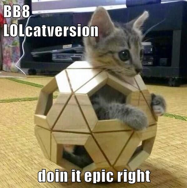 BB8                      LOLcatversion  doin it epic right