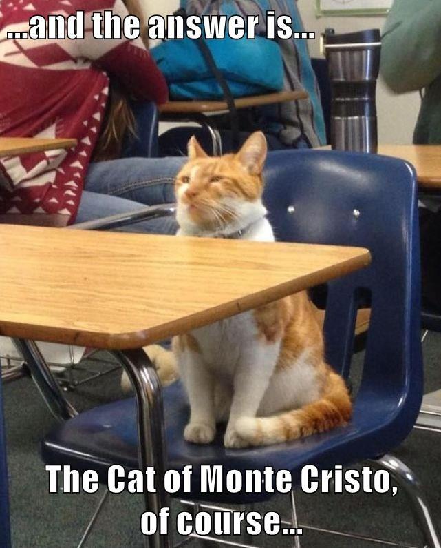animals school caption Cats funny - 8603684608