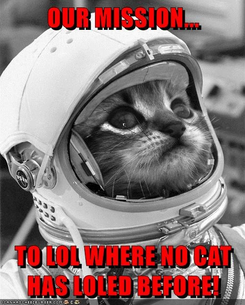 OUR MISSION...  TO LOL WHERE NO CAT HAS LOLED BEFORE!