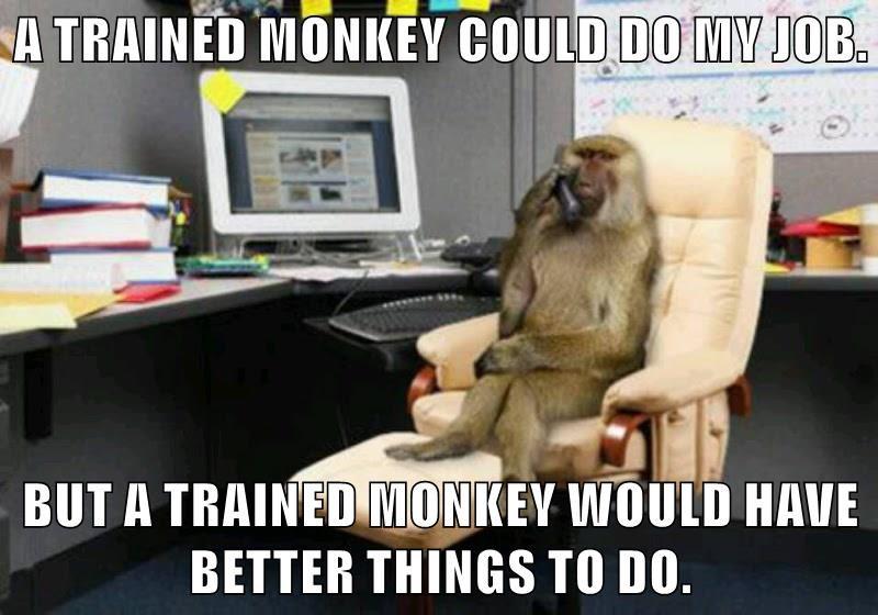 Risultati immagini per trained monkey