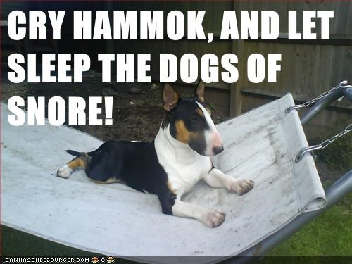 CRY HAMMOK, AND LET SLEEP THE DOGS OF SNORE!