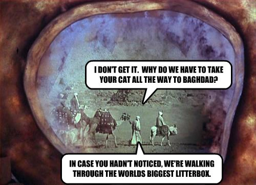 I DON'T GET IT.  WHY DO WE HAVE TO TAKE YOUR CAT ALL THE WAY TO BAGHDAD?