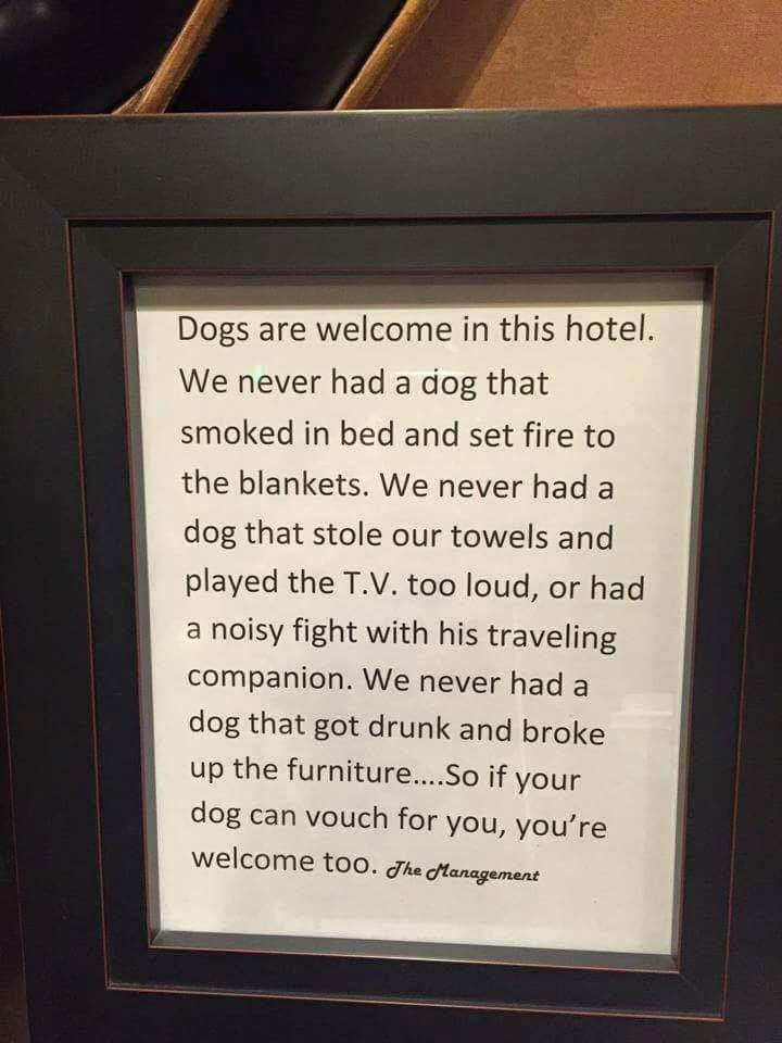 sign,dogs,hotel,welcome