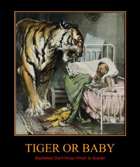 TIGER OR BABY