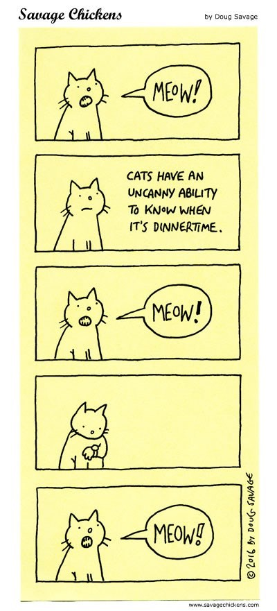 cats web comics It's Always Time