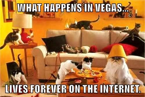 WHAT HAPPENS IN VEGAS...  LIVES FOREVER ON THE INTERNET.