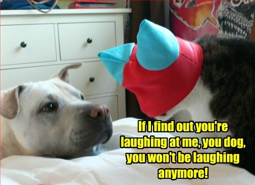 If I find out you're laughing at me, you dog, you won't be laughing anymore!