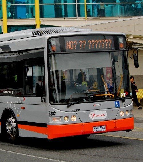 funny memes bus no question marks