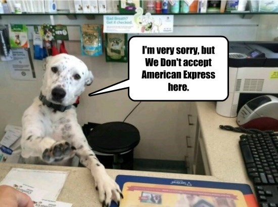 dogs,american express,dont,caption,accept