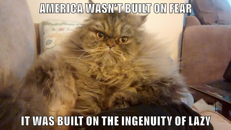AMERICA WASN'T BUILT ON FEAR  IT WAS BUILT ON THE INGENUITY OF LAZY