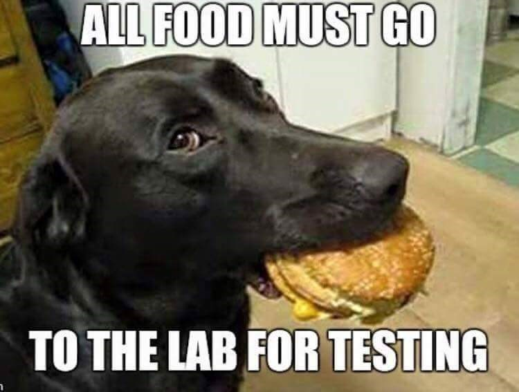 food goes to the lab for testing
