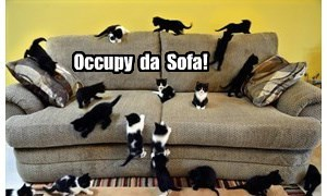 Watch out Comfee Sofa,  they're coming for you!
