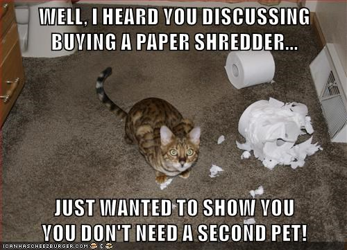 WELL, I HEARD YOU DISCUSSING BUYING A PAPER SHREDDER...  JUST WANTED TO SHOW YOU                        YOU DON'T NEED A SECOND PET!