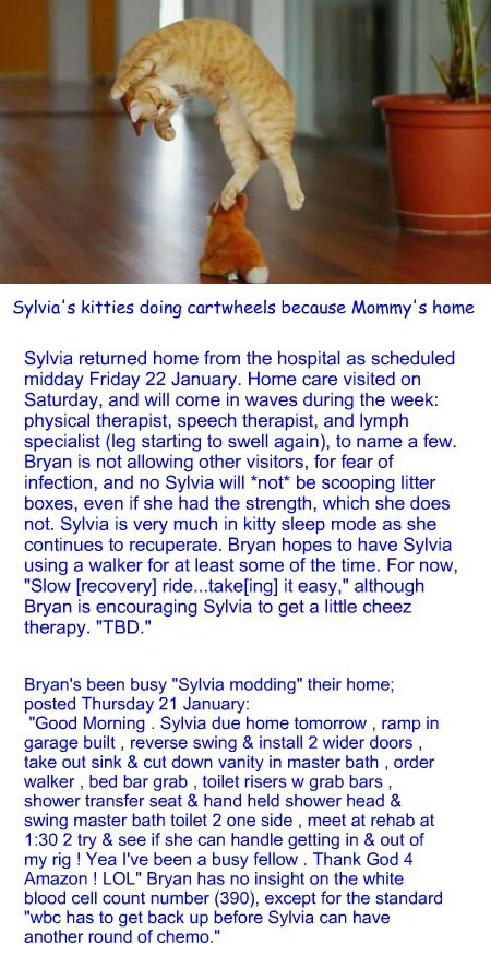 Home Sweet Home: Sylvia update Sunday 24 January 2016