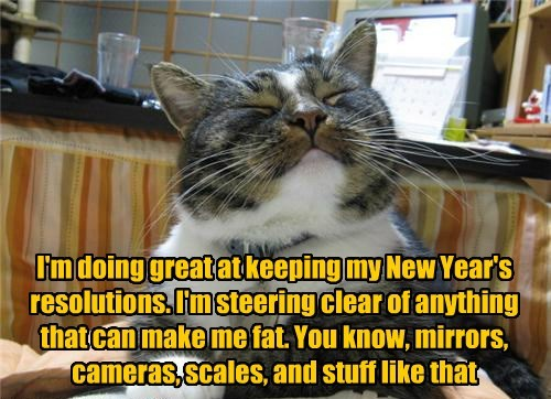 Great Job,Kitteh!