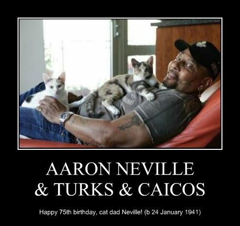 AARON NEVILLE & TURKS & CAICOS