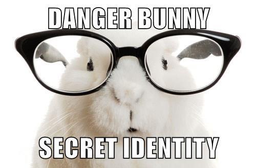 DANGER BUNNY  SECRET IDENTITY