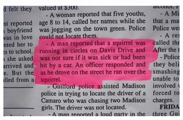 funny fail image newspaper notice cop kills squirrel