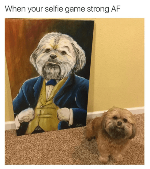 funny animal image of dog next to painting of the dog