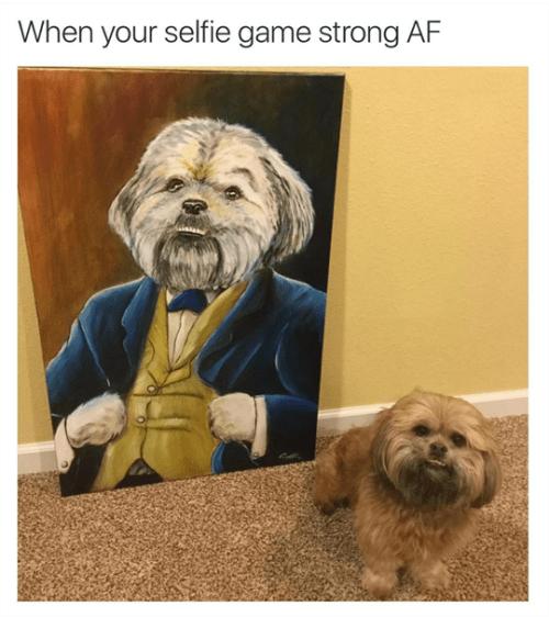 A Work Of Bark