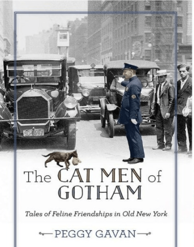 book cover about cats