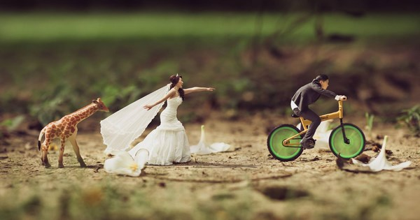 shrunken wedding photos