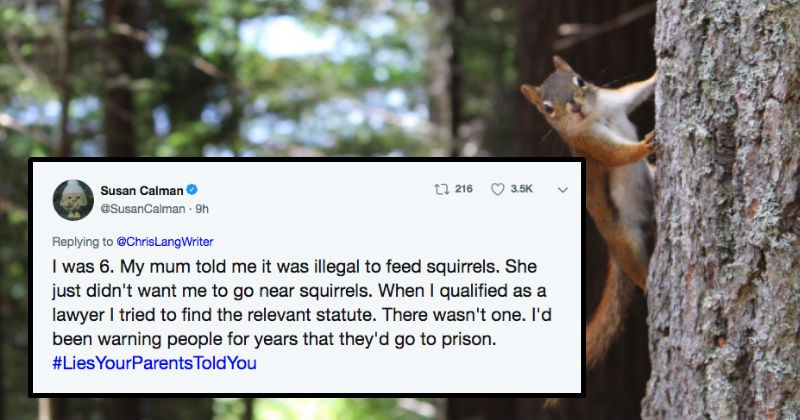 parent telling child feeding squirrels is illegal