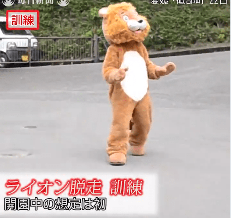 man in a lion costume