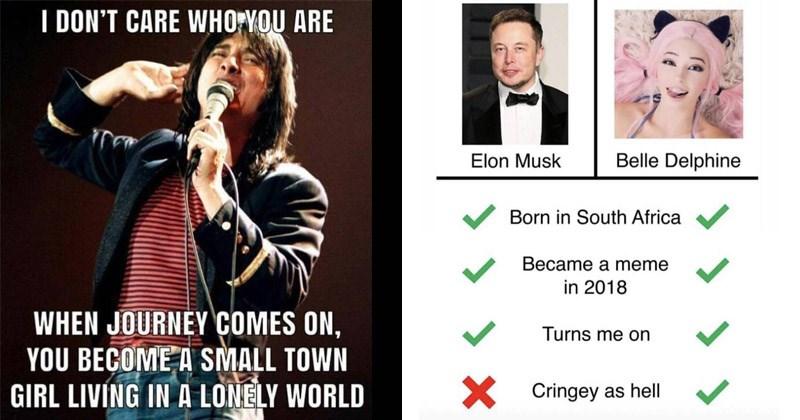 50 Various Memes That Don't Suck