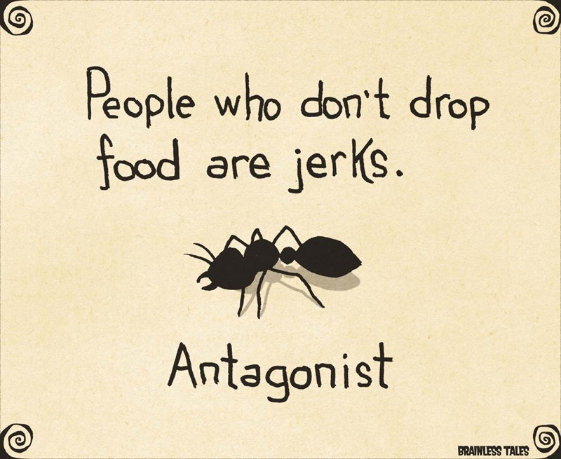 funny ant