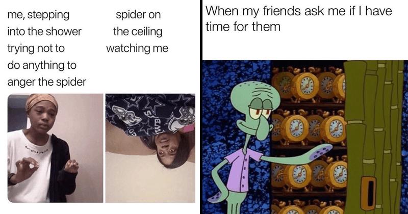 Funny memes, funny tweets, dog memes, cat memes, spongebob memes, wholesome memes.