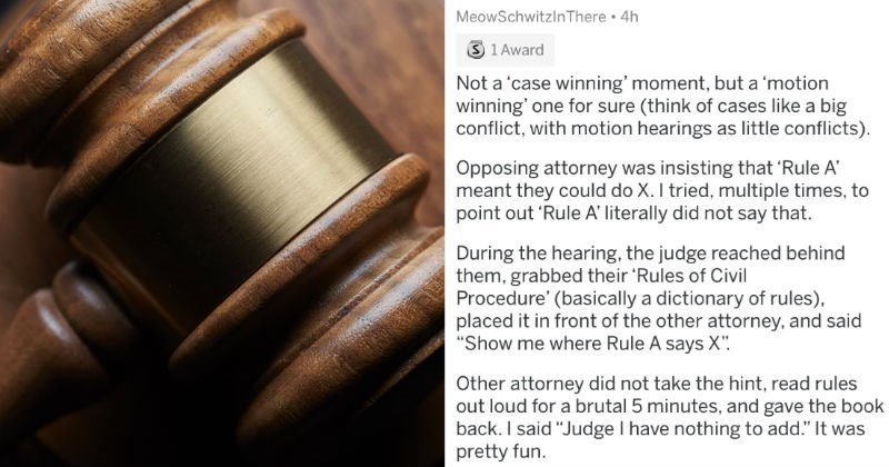 story about lawyer in court owning himself