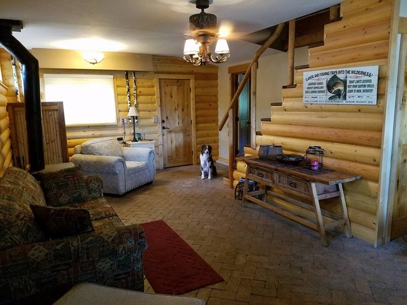 cabin,dogs,hiding,wheres waldo,lurking