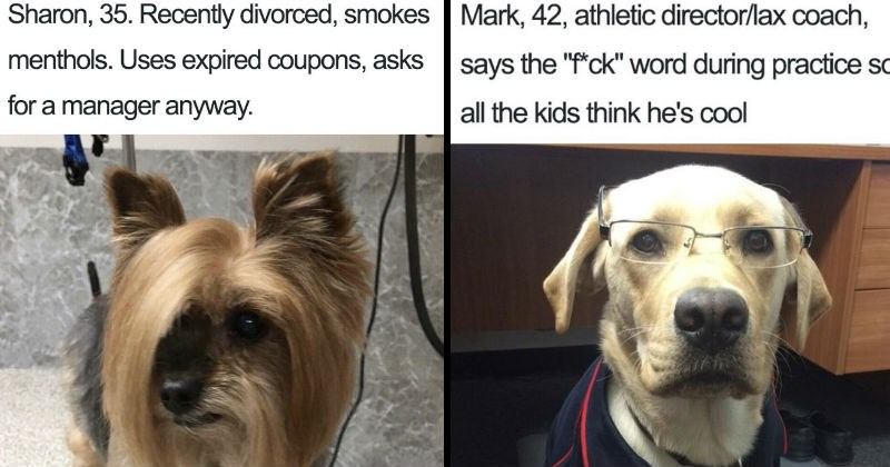 dog bios that are so funny and real