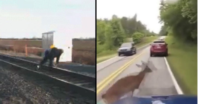 fails that where really close calls and could have been so much worse