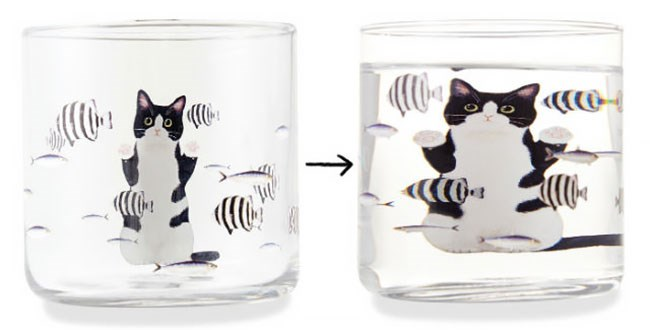cats on glass cup