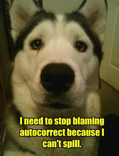 dogs autocorrect spell spill caption stop blaming